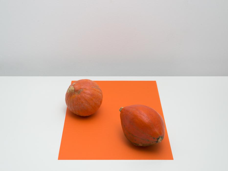 Pumpkins, 2014